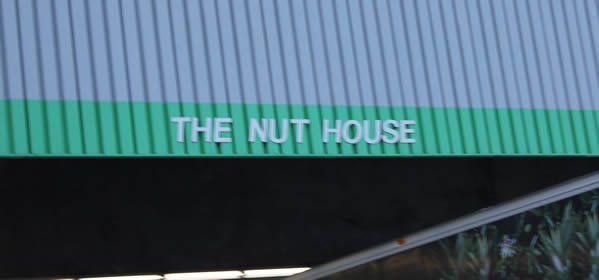 Our Nuthouse